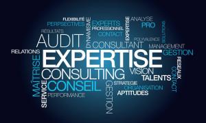 Expertise audit conseil consultant tagcloud mots illustration